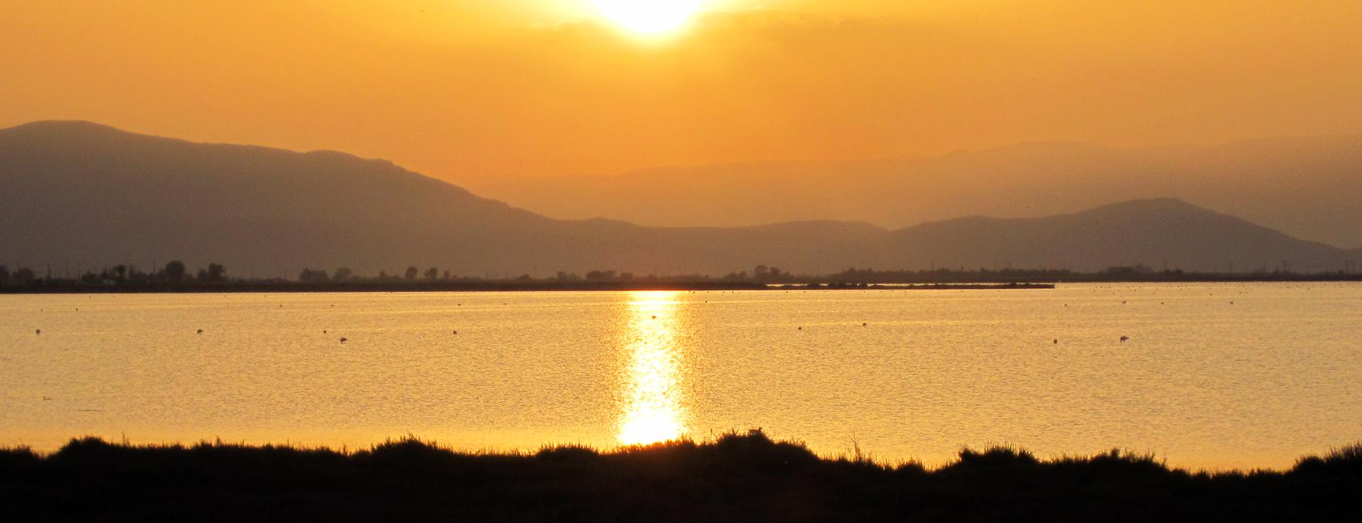Excursion guiada por el Delta del Ebro
